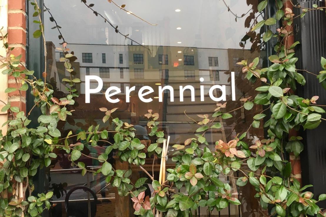 Perrenial (NC)